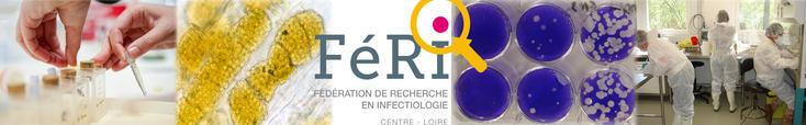 Bienvenue sur le site de la Fédération de recherche en infectiologie de la région Centre Val de Loire